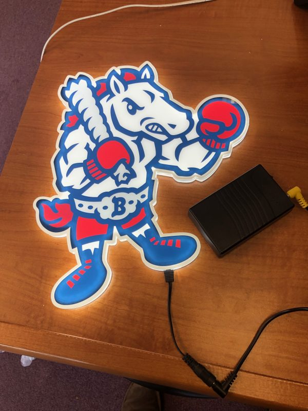 LED Mascot to Brighten up your Sidelines